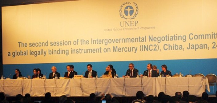 12.846 is a prerequisite for applying to attend the final negotiating session of a global mercury treaty in 2013.